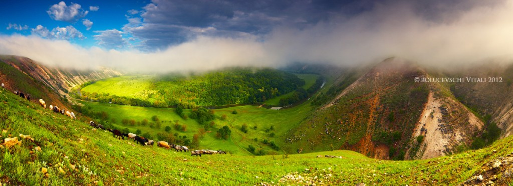 Пейзаж, Молдова, фотограф, реут, Moldova, foto