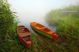 The_boat_landing